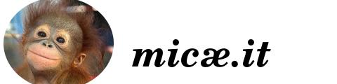 micae.it